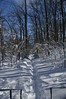 100206_SnowStorm_47