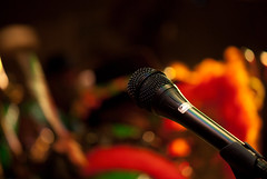 flower(0.0), singing(0.0), microphone(1.0), yellow(1.0), red(1.0), macro photography(1.0), green(1.0), close-up(1.0), audio equipment(1.0),