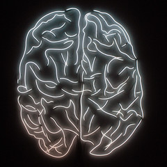illustration, brain, organ,