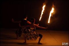 Bornfire Festival 2009