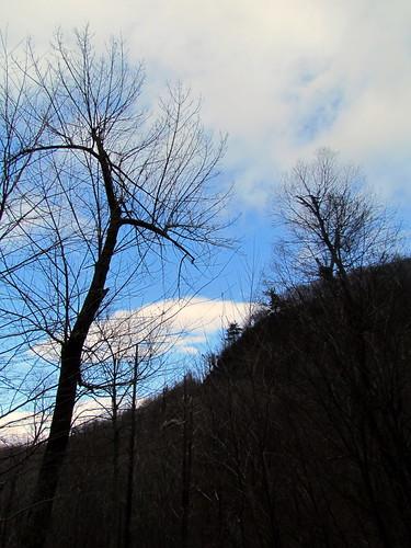 trail va skylinedrive darkhollowfalls