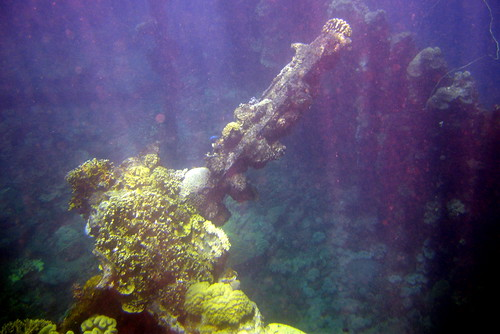 Snorkeling above a wreck, Truk Lagoon