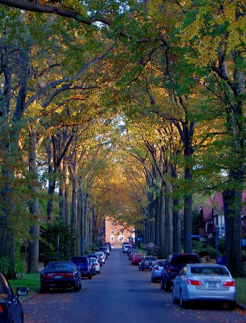 Forest Hills Gardens Flickr Photo Sharing