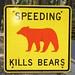 Unhappy Bears