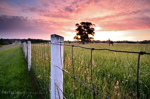 tree sunrise fence landscape nikon maryland explore filter hff gnd d7000