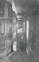 Våpensamlingen i Erkebispegården