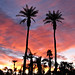 Palm Springs Sunrise