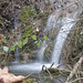 Small photo of Force Waterfall