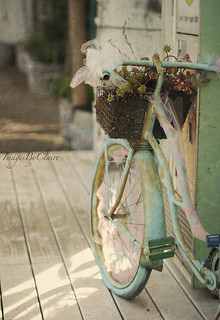 Bicycle with tulle...{12/365}