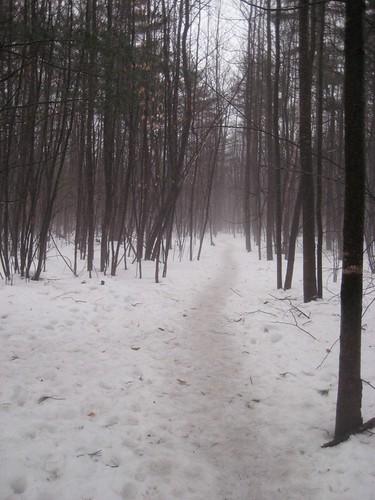 winter trail dunelakewoods