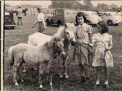 pony show c 1947