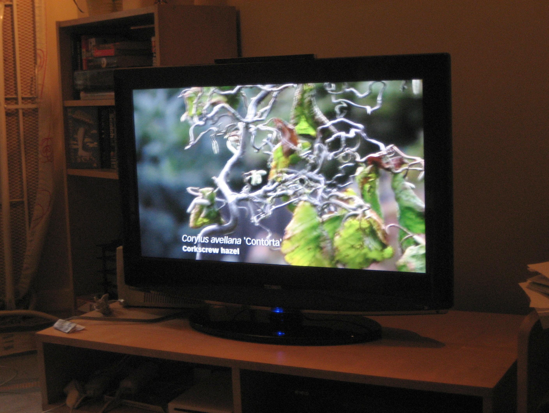 Телевизионная аппаратура: для тех, кто ценит качество и комфорт thumbnail