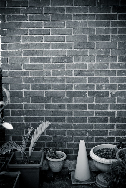 Header of Against The Wall