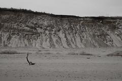 20100219 - Nauset Light Beach Walk
