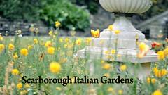 Italian Gardens in Scarborough on Vimeo by Thomas Tolkien
