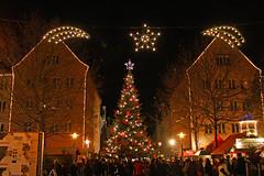 Neubrandenburg Weihnachten 2009 - Weberglockenmarkt, Webertanne