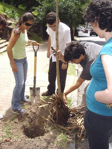 Planatacion 2009-Rotaract