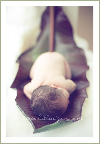 baby in banana leaf 2