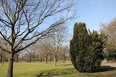 Walpole Park (Jeff)