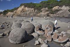 Moeraki Boulders (iii)