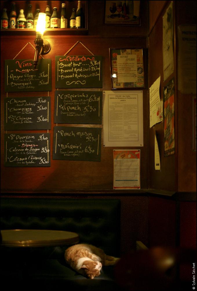 Au Welsh pub - Angers