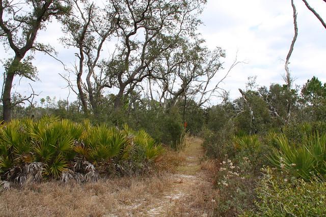 Begin Of Scrub Jay Loop Trail Flickr Photo Sharing