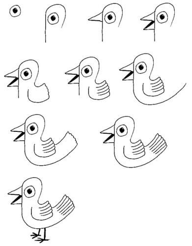 Small garden cartoon - Vogel Tekenen Flickr Photo Sharing