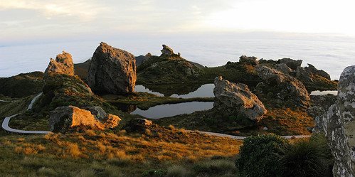 Tors and Tarns in Evening Light