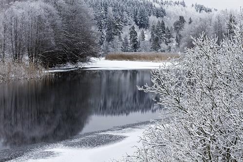 winter snow tree reflections river frost sweden sverige stångån östergötland sturefors canon50mmf14usm canoneos7d hovetorp