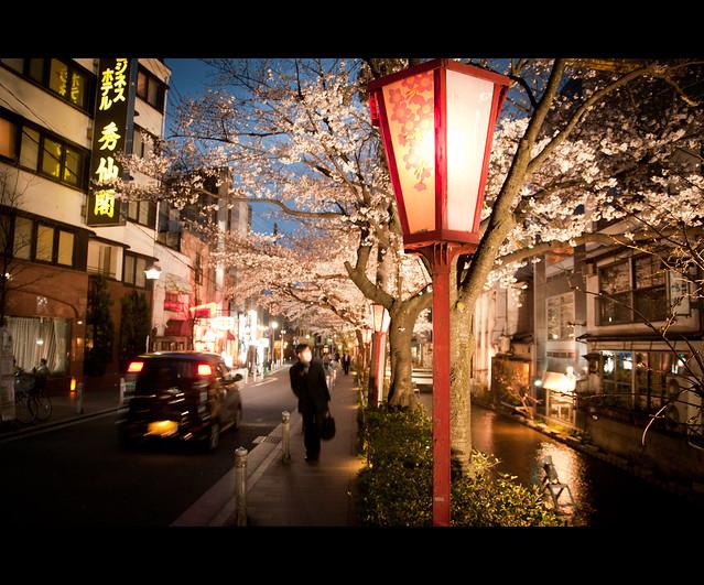 Goodbye, Kyoto