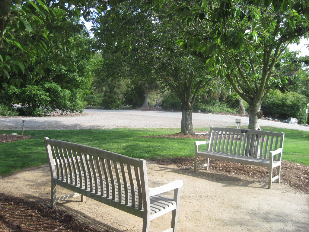 Amazing Dads Memorial Benches South Coast Botanic Garden Flickr Short Links Chair Design For Home Short Linksinfo