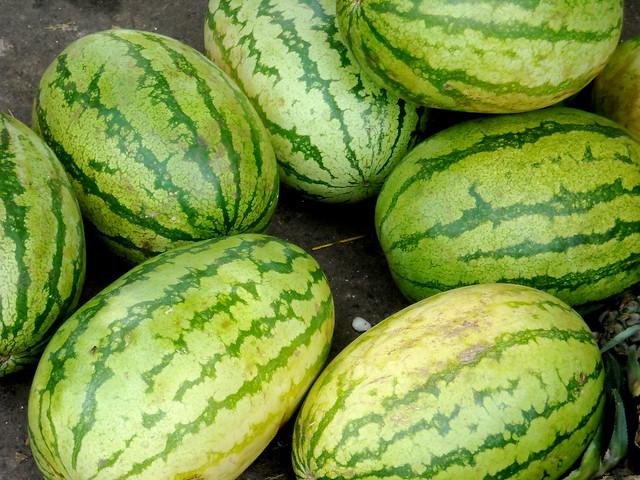 India - Koyambedu Market - Watermelon 01