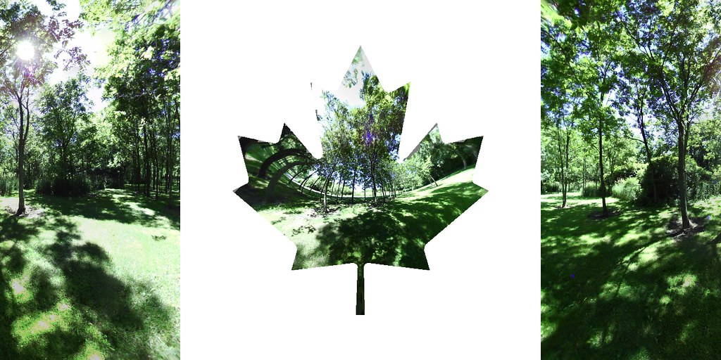 Grove - Canadian Flag Projection