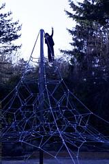 nick atop the spiderweb