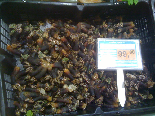 Barnacle Prices 99€/kg ($65/lb)