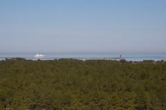 Cape Henlopen 3