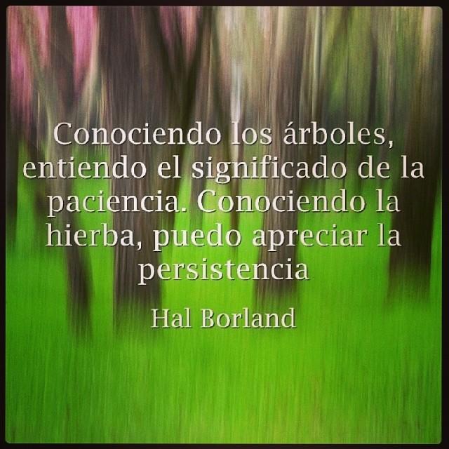 Frases Superacionpersonal Yosoyherbalife Citas Versio Flickr