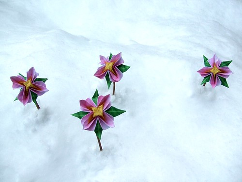 snow flower paper Snow flower and the secret fan demonstrates the chinese-american director  wayne wang remains one of the world's best directors of.