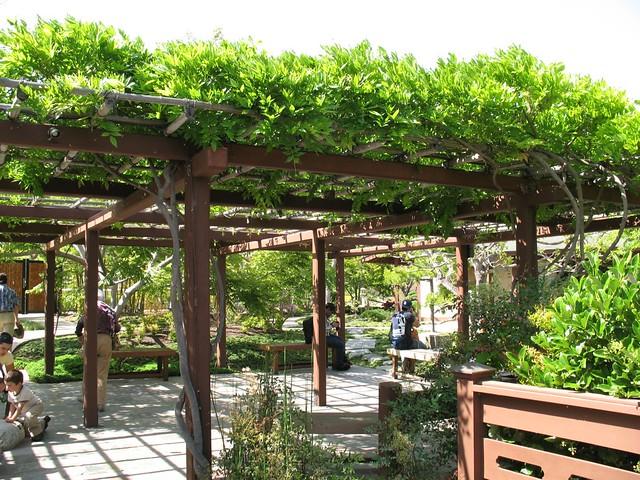 Balboa Park San Diego Earth Day Japanese Tea Garden 030 Flickr Photo Sharing