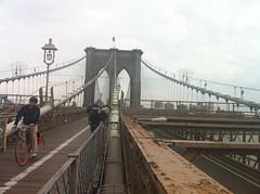 girder bridge, transport, landmark, boardwalk, overpass, walkway, bridge, cable-stayed bridge,