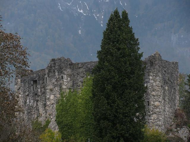 Burgruine ruine der burg forstegg in salez im rheintal im kanton st