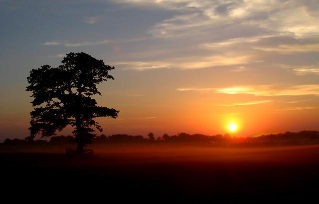 Sunset, Fujifilm FinePix F440