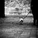 Best friends always walk in the same direction, in different ways though :) by ArTeTeTrA