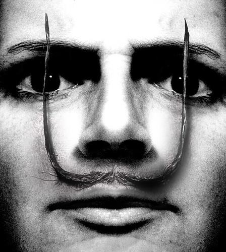 113/365 || Moustache Max
