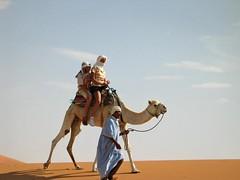Passeio de camelo no deserto do Saara