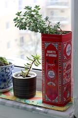 Plant Placemat