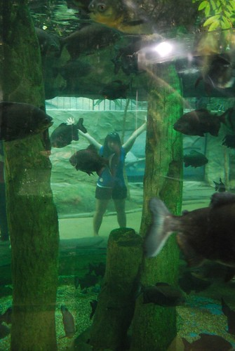 Toni & Fish at Underwater World