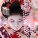 purple / pink / flower / girl / winter / bokeh : maiko (geisha apprentice) kyoto, japan / canon 7d  日本・京都 舞妓 梅ちほさん
