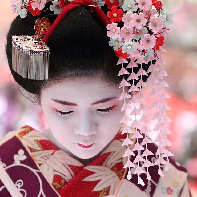 Girl Kyoto Japan 7d Geisha Bokeh Maiko