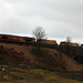 Small photo of Goods Train